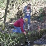 envirothon-2018-day-2-at-the-stream-getting-samples