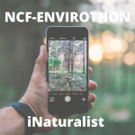 NCF Envirothon INaturalist Project